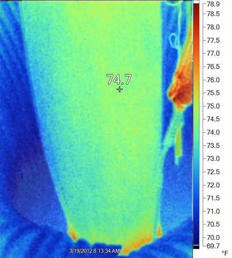 thermal image from Monday morning