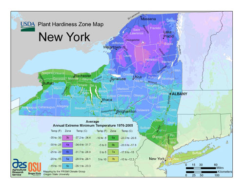USDA hardiness zone map for New York