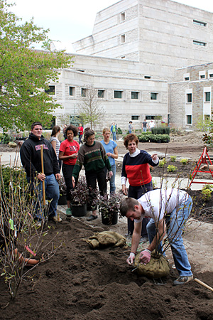 Nina Bassuk (second from right) supervises students planting trees, shrubs and groundcovers in the ILR courtyard. (Left to right, Paul Elfers, Rochelle Brahalla, Delia Bolster, Victoria Kraft, Bassuk and Mike Voelkel.)
