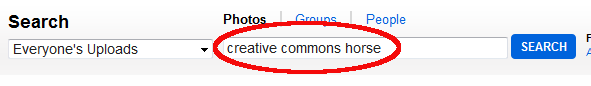 creative commons horse